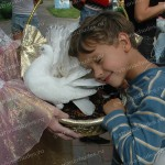 Дрессированные животные на детских праздниках